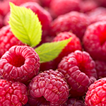 raspberry_ThinkstockPhotos-480837812