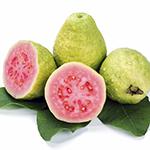 guava_188069750