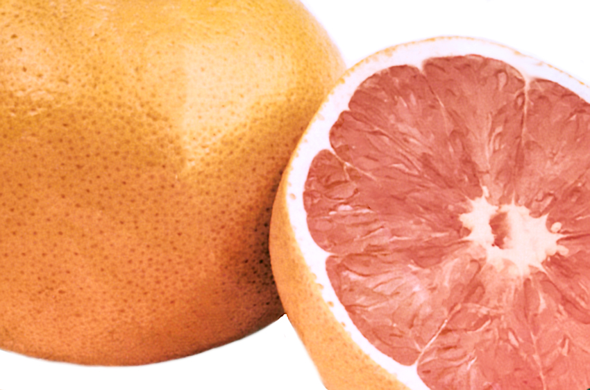 ftm_grapefruit